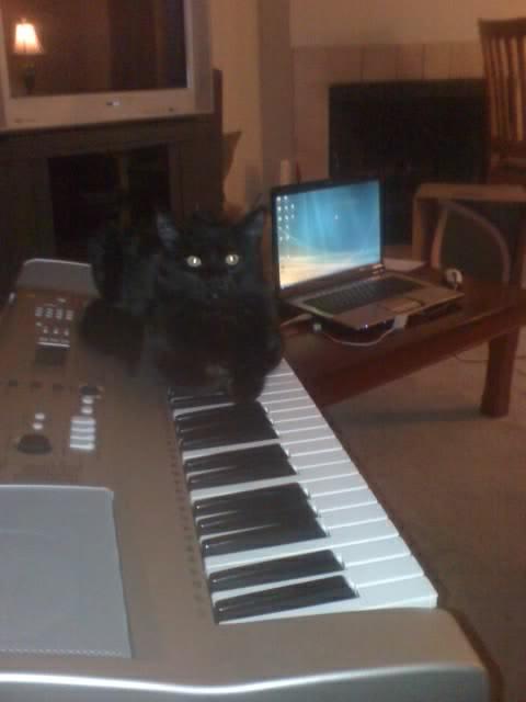 lucky-composing
